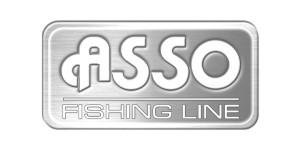 Logo Asso grigio